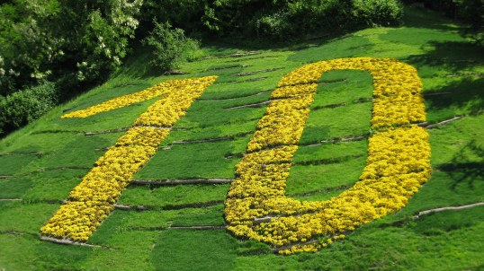 field-of-flowers-making-up-the-number-10-ten