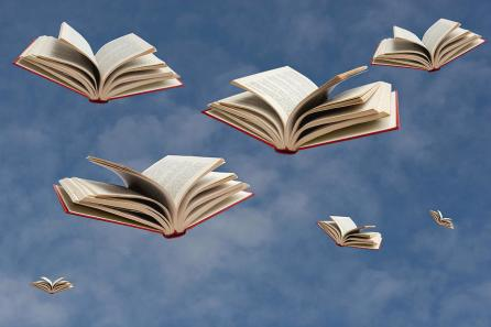 flying-books-luisportugal